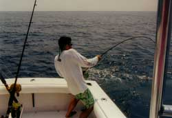 Ethan Weitz Reeling in a Sailfish